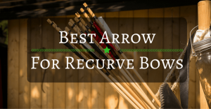 Best Arrow for Recurve Bows