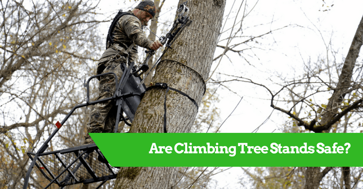 Are Climbing Tree Stands Safe?
