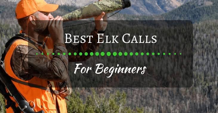 Best Elk Calls For Beginners