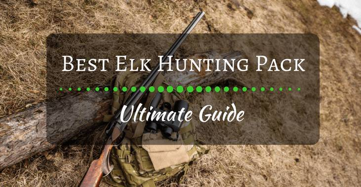 Best Elk Hunting Pack - Ultimate Guide