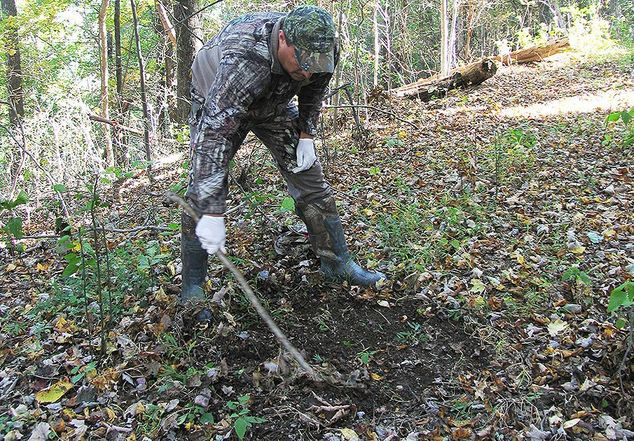 deer mock scrape