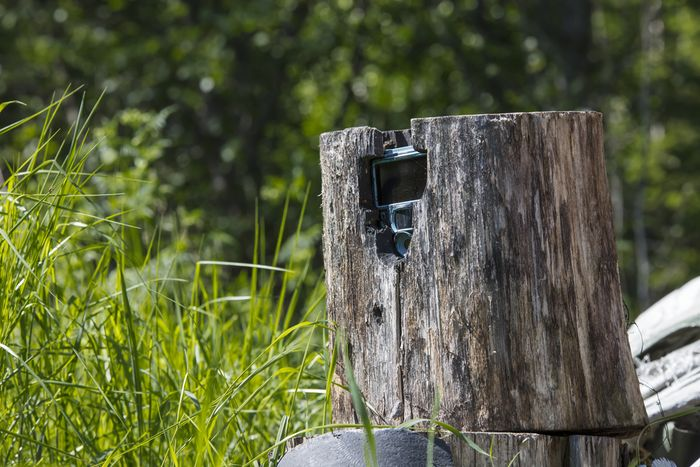 Trail Cameras for Increasing Your October Odds