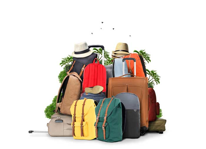 travelibility