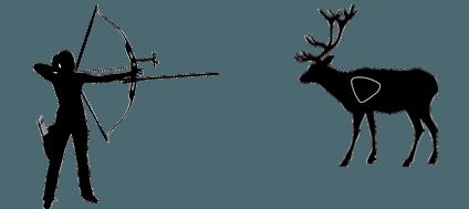 best 3d deer target