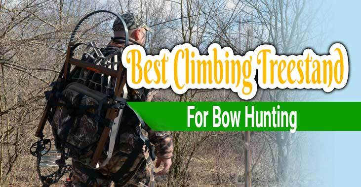 Best Climbing Treestand for Bowhunting