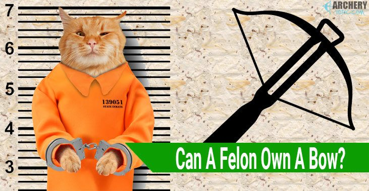 Can A Felon Own A Bow?
