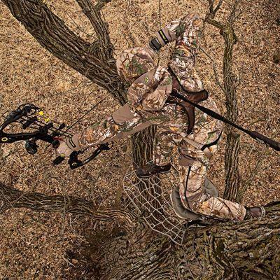 Tree Spider Speed Hunter - Fall Prevention