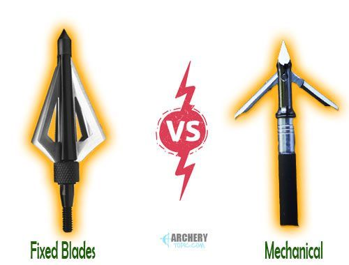 Types of Broadheads - Fixed Blade vs Mechanical