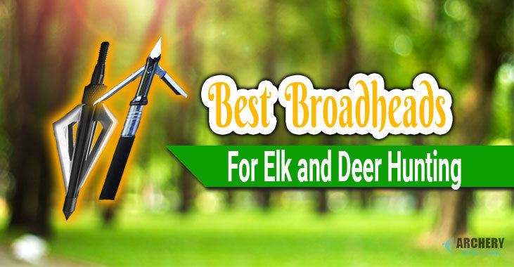 best broadheads for elk and deer hunting