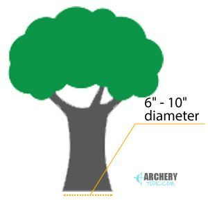How Big A Tree Do I Need For A Climbing Stand