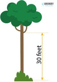 How High Should A Tree Stand Be For Bow Hunting?