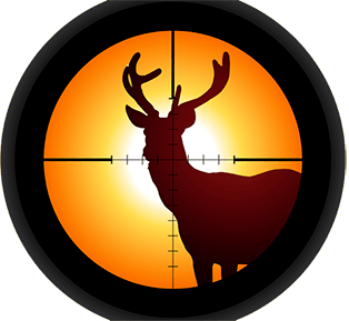 Why Deer Hunt with a Crossbow