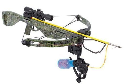 crossbow bowfishing