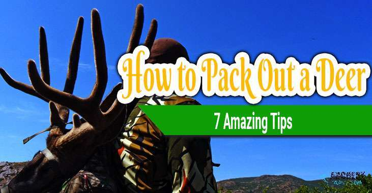 how to pack out a deer