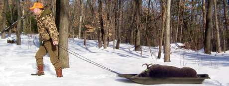deer game sled