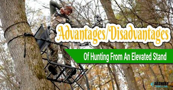 What are the Advantages/Disadvantages Of Hunting From An Elevated Stand?