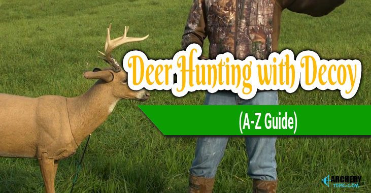 Deer Hunting with Decoy
