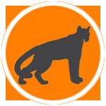 mountain lion hunting dog breeds