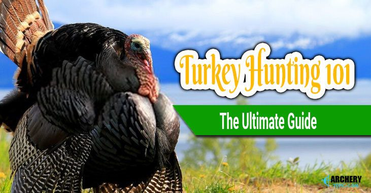 Turkey Hunting 101