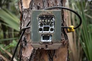 locked trail camera