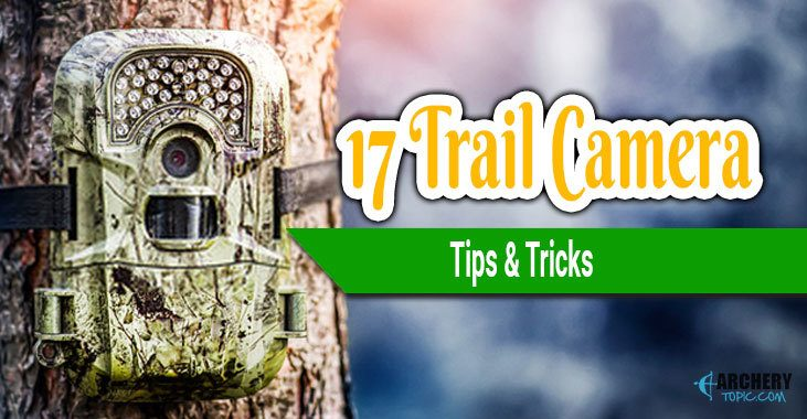 trail camera tips