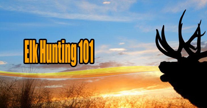 elk hunting 101