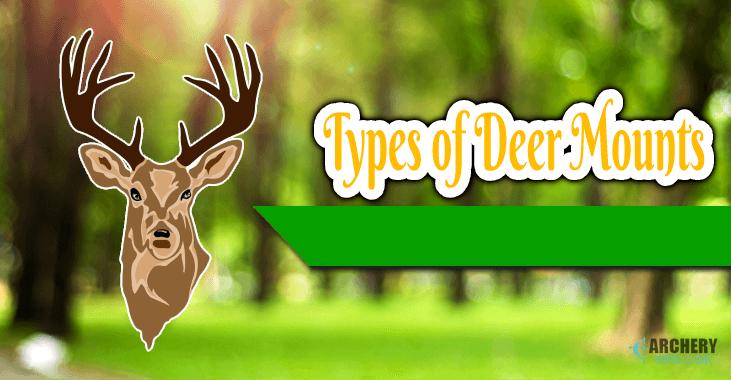 Types of Deer Mounts