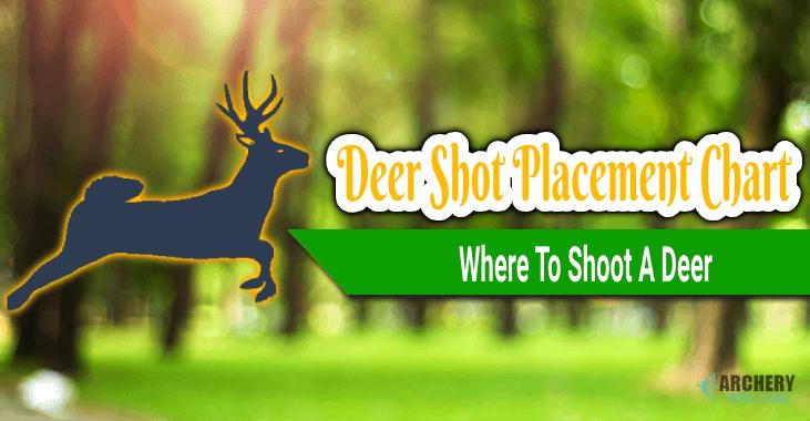 deer shot placement chart